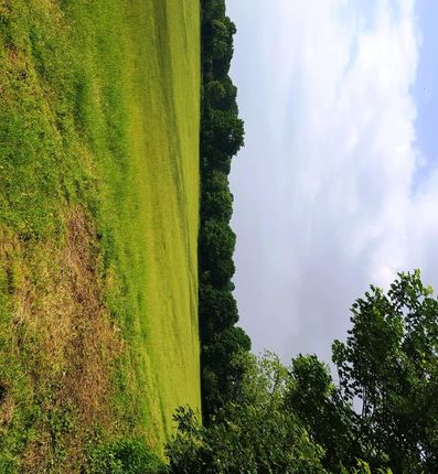 Thumbnail Land for sale in Nr Pulborough, West Sussex