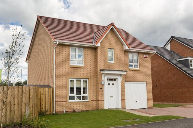 "Thumbnail Detached house for sale in ""Carrick"" at Ravenscliff Road, Motherwell"