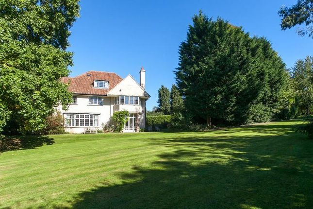 Thumbnail Detached house for sale in Bridgwater Road, Winscombe