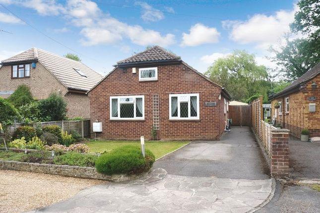 Thumbnail Detached bungalow for sale in Green Lane, Ockham, Woking