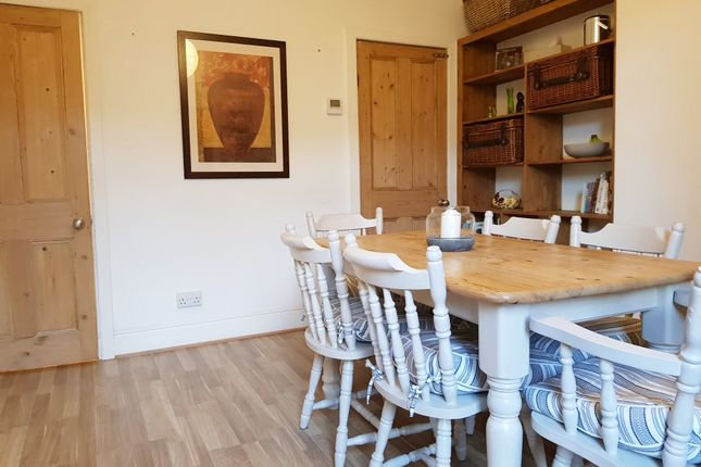 Thumbnail Terraced house to rent in Peveril Road, Endcliffe Park, Sheffield