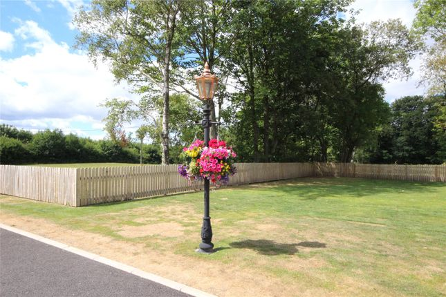 Grounds of St David, Camelot Holiday Park, Longtown, Carlisle, Cumbria CA6