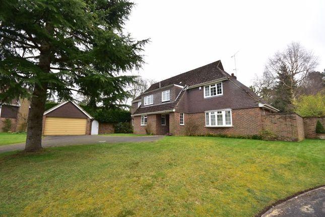 Thumbnail Detached house to rent in Giffards Meadow, Farnham