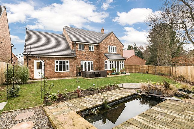 Thumbnail Detached house for sale in 21 Siskin Drive, Corbridge, Northumberland