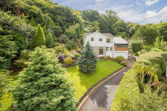 Thumbnail Detached house for sale in Ilsham Crescent, Torquay