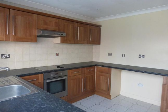 Thumbnail Terraced house to rent in Holland Street, Hull