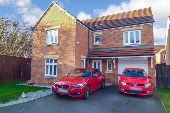 Thumbnail Detached house for sale in Cinnabar Road, Stockton-On-Tees