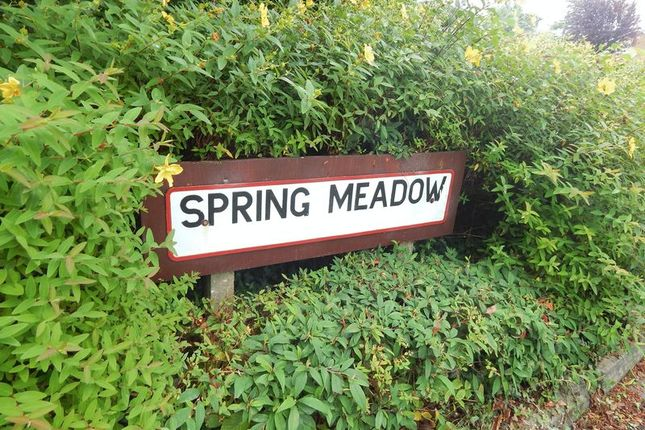 Thumbnail Detached bungalow for sale in Spring Meadow, Clayton Le Woods, Leyland