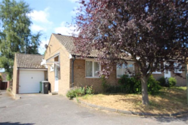 Thumbnail Bungalow to rent in Lilac Close, Bordon