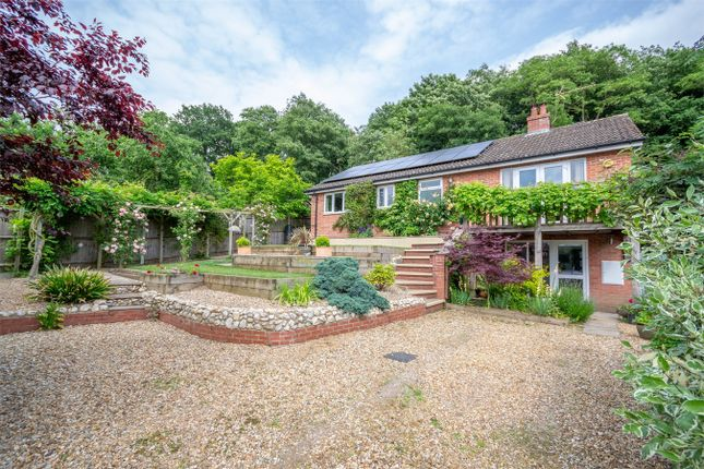 Thumbnail Detached house for sale in Rectory Road, Elsing, Dereham