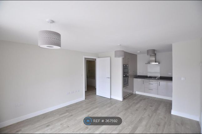 Thumbnail Flat to rent in St Aubyn Street, Plymouth