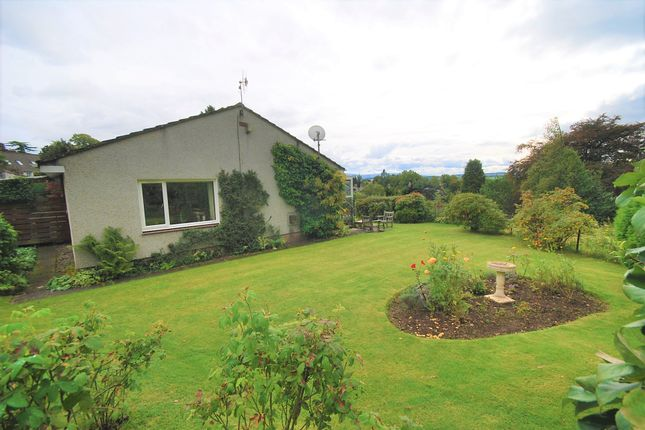 Thumbnail Detached bungalow for sale in Knock Road, Crieff