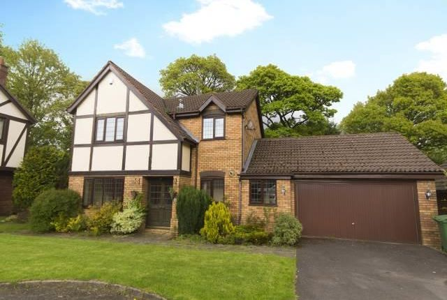 Thumbnail Detached house to rent in Wykeham Mews, Bolton
