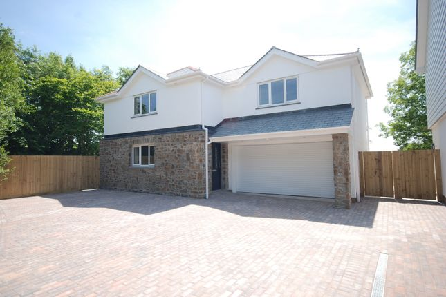 Thumbnail Detached house for sale in Rectory Close, Buckland Brewer, Bideford