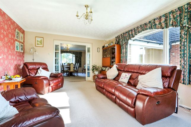 Thumbnail Detached bungalow for sale in North Terrace, Mildenhall, Bury St. Edmunds