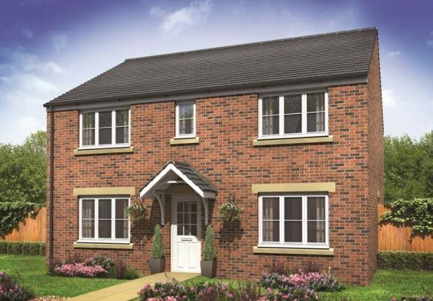 Thumbnail Detached house for sale in Plot 147 Hadleigh, Hampton Gardens, Hampton, Peterborough