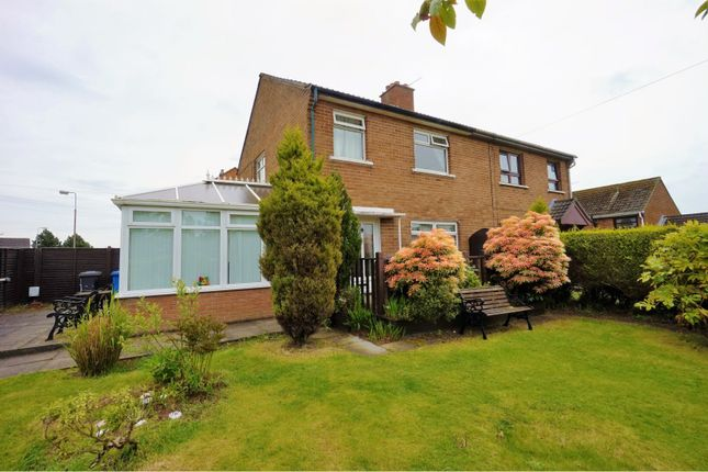 Thumbnail Semi-detached house to rent in Brooklands Avenue, Belfast