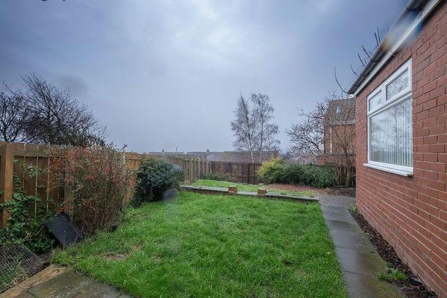 Back Garden of Woodlands, Throckley NE15
