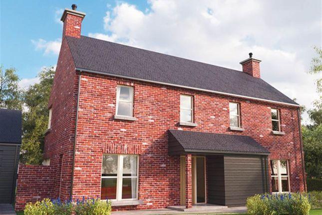 Thumbnail Detached house for sale in Ferry Quarter Gardens, Strangford, Downpatrick