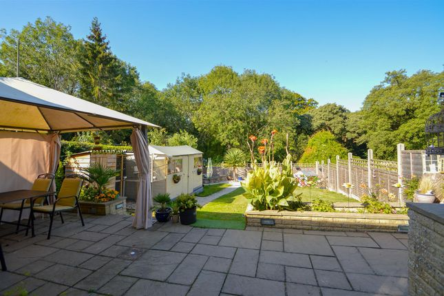 ## Rear Garden of Mote Park, Maidstone ME15