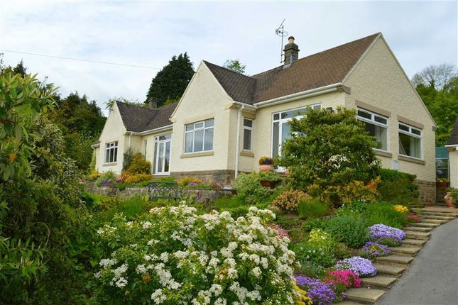 Thumbnail Detached bungalow for sale in The Gables, 73, Church Street, Bonsall Matlock, Derbyshire