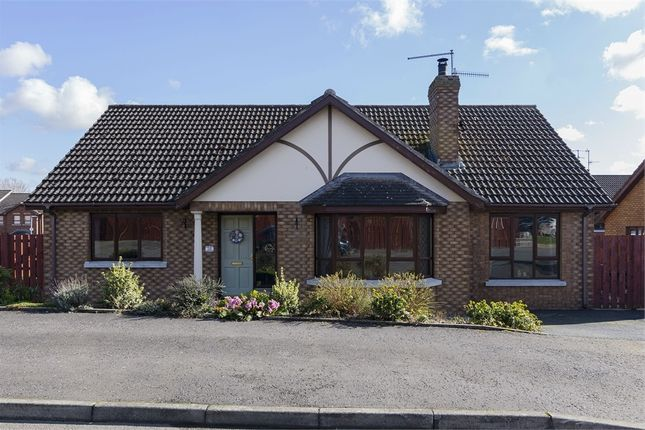 Thumbnail Detached bungalow for sale in Hunters Hill Park, Gilford, Craigavon, County Armagh
