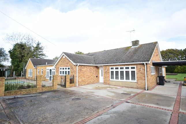 Thumbnail Detached bungalow for sale in Weeley Road, Little Clacton, Clacton-On-Sea
