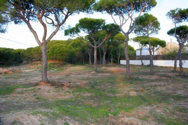Land for sale in Portugal, Algarve, Quinta Do Lago Area