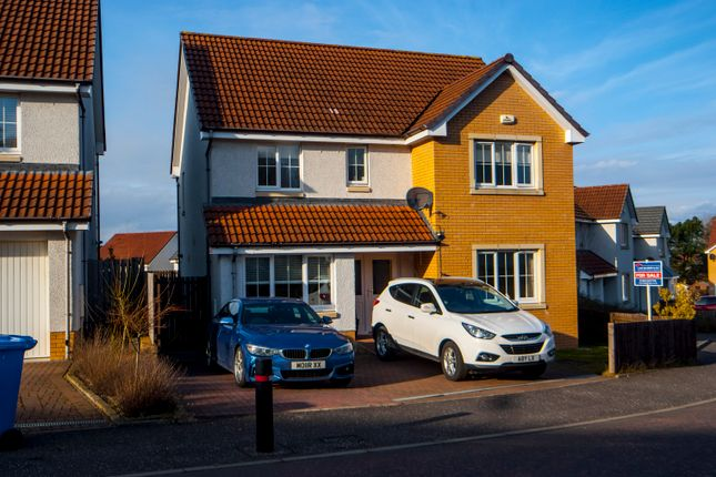 Thumbnail Detached house for sale in John Valentine Place, Reddingmuirhead