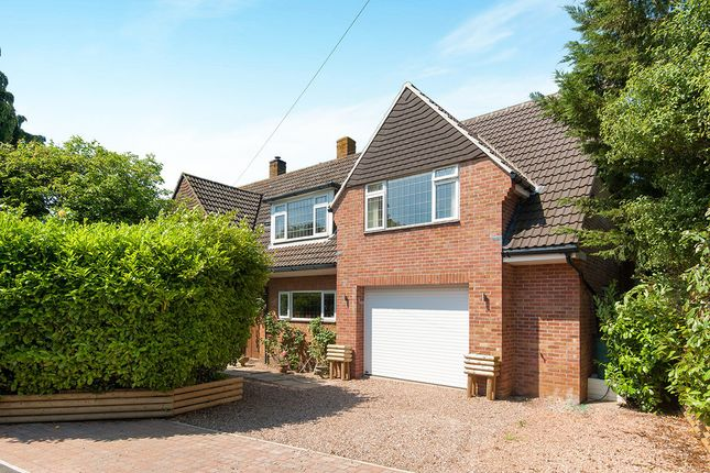 Thumbnail Detached house for sale in Gorse Lane, Exmouth