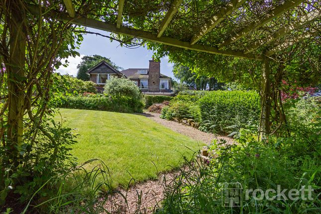 Thumbnail Detached bungalow to rent in Moddershall, Stone