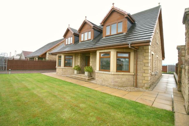 Thumbnail Detached house for sale in Wishaw Road, Wishaw