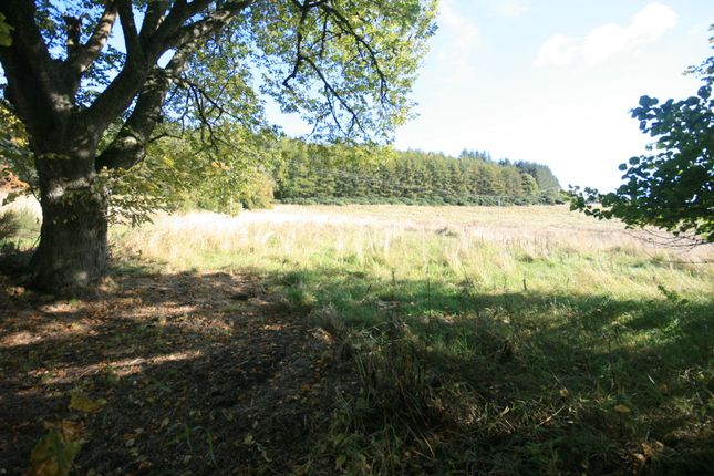 Thumbnail Land for sale in Grange, Keith