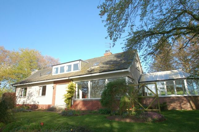 Thumbnail Detached bungalow for sale in Holmview, Hyndford, Lanark