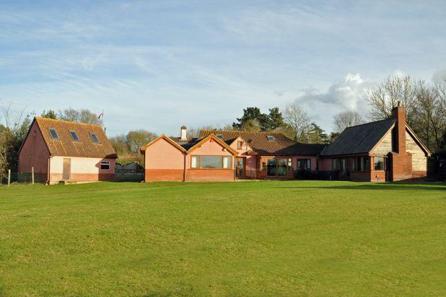 Thumbnail Property for sale in Flatford Road, East Bergholt, Colchester