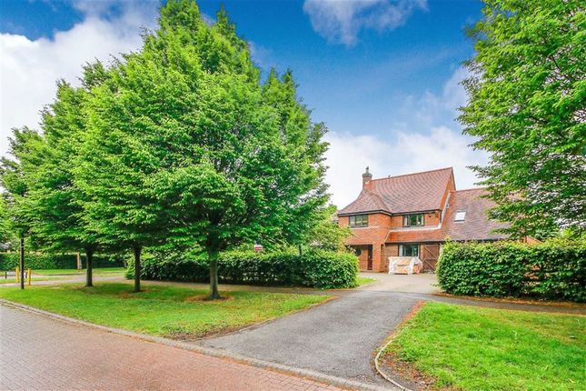Thumbnail Detached house for sale in Portland Drive, Willen, Milton Keynes, Bucks