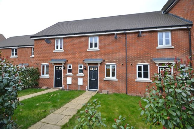 Thumbnail Terraced house to rent in Hazel Avenue, Minster On Sea, Sheerness