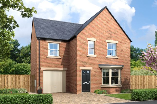 Thumbnail Detached house for sale in Greysfield, Backworth Park, Backworth