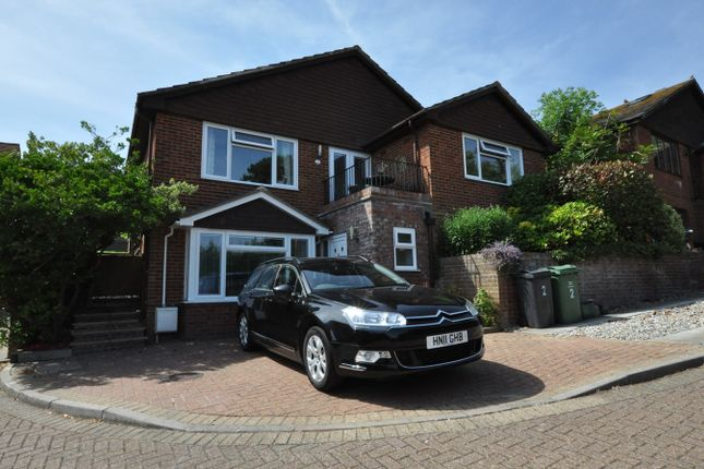 Thumbnail Detached house for sale in Wilkins Way, Bexhill-On-Sea