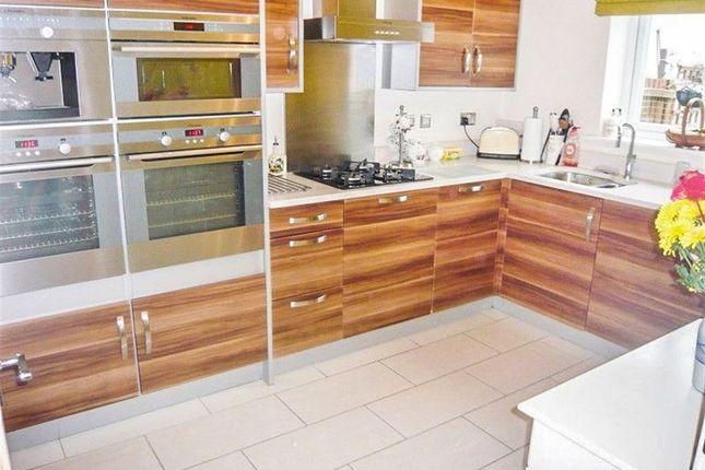 Thumbnail Property to rent in Gallt Y Ddrudwen, Broadlands, Bridgend