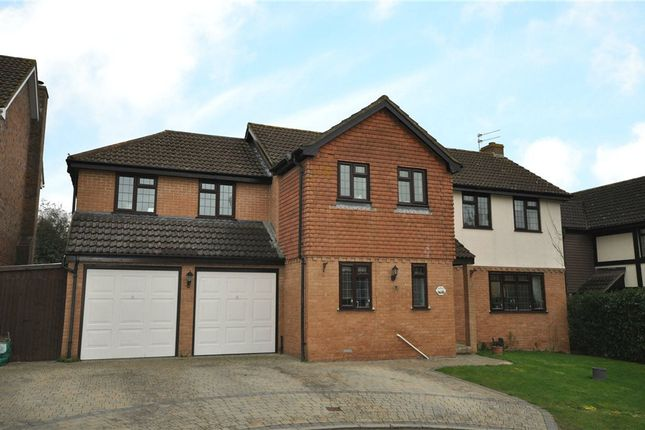 Thumbnail Detached house for sale in Thyme Close, Chineham, Basingstoke