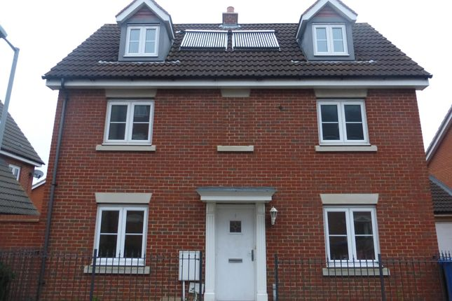 Thumbnail Detached house to rent in Provan Court, Ipswich