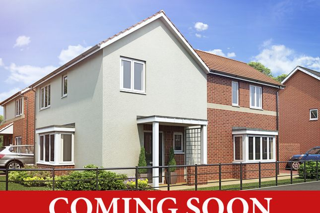 Thumbnail Detached house for sale in Dovedale Road, Erdington, Birmingham