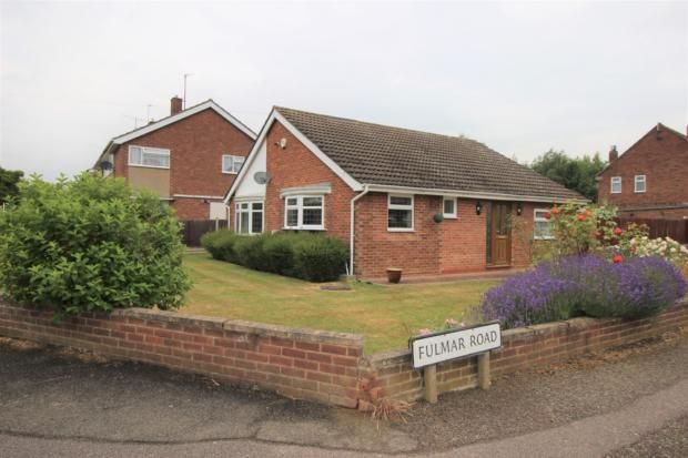 Thumbnail Bungalow to rent in Fulmar Road, Bedford