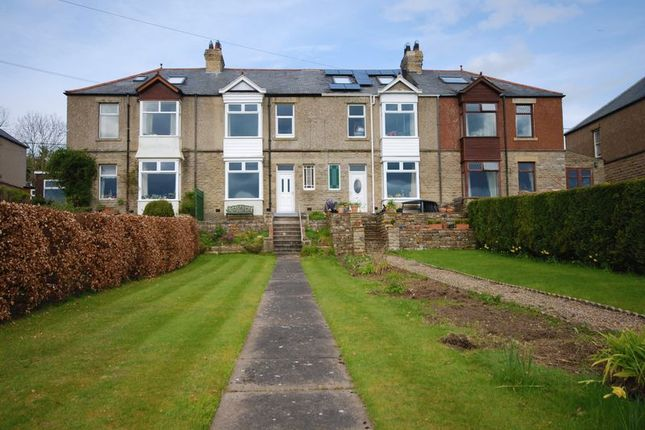 Thumbnail Semi-detached house for sale in Allen View, Catton, Allendale