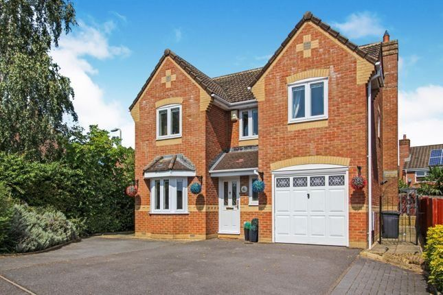 Thumbnail Property to rent in Anderferas Road, Andover, Hampshire