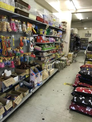 Photo 6 of Pets, Supplies & Services S60, South Yorkshire