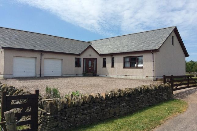 Thumbnail Detached bungalow for sale in Forfar