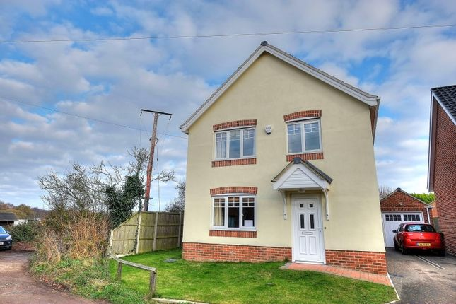 Thumbnail Detached house to rent in Empsons Loke, Great Yarmouth