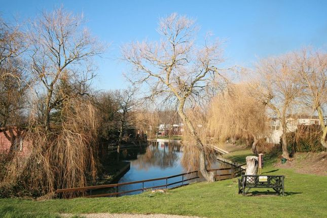 Lake On Park of Flag Hill Country Park, Great Bentley, Colchester CO7